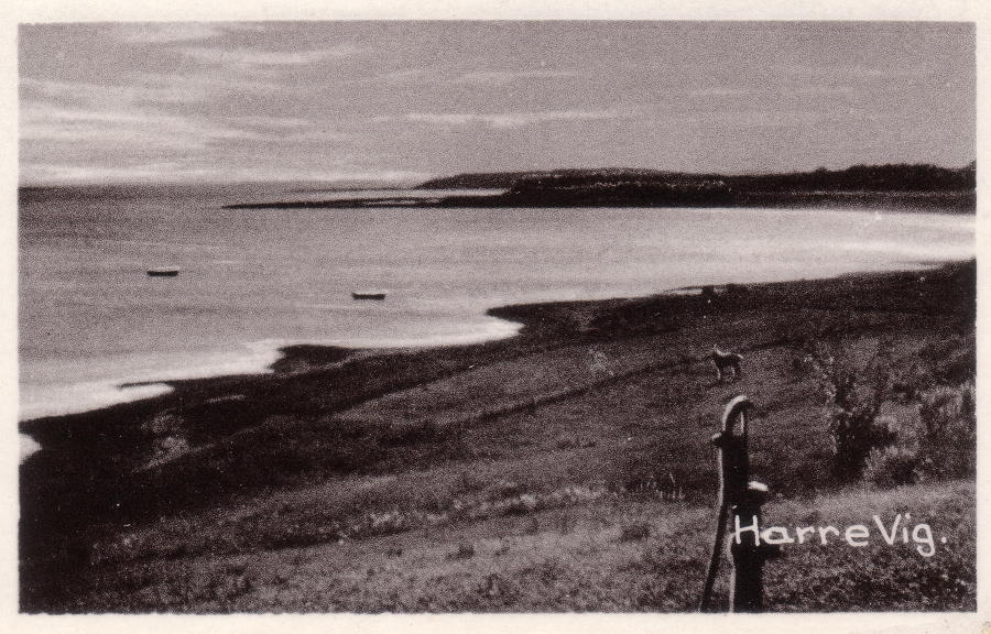 Harrevig.1955